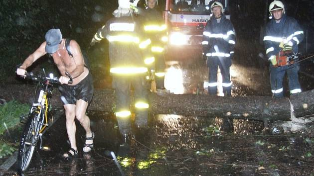 Spadlé stromy museli hasiči rozřezat.