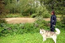 Z vysoké hladiny Lučiny měl obavy také kynolog Roman Koziel, který si přišel pro svého psa Arona.