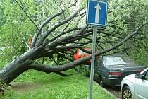 Vyvrácený strom poškodil dvě zaparkovaná auta