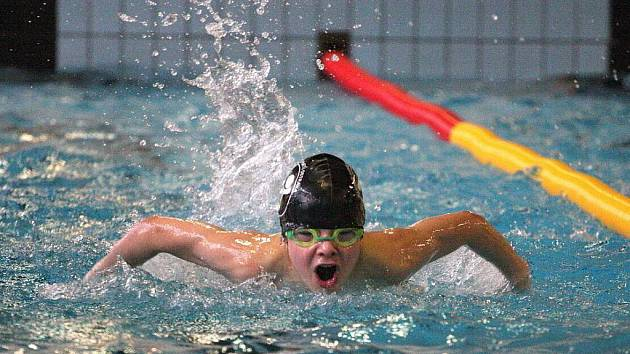 Malí plavci a plavkyně soutěžili v Karviné.