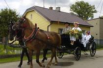 Už po dvacáté se letos sešli přátelé z Věřňovic, Dolní Lutyně a polského Godówa a Gorzyc, aby společně přivítali léto. V areálu na břehu hraniční řeky Olše se konala Letní česko-polská slavnost, tzv. wianki.