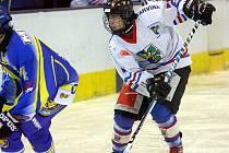 V tomto týdnu je na programu několik hokejových zápasů různých věkových kategorií.