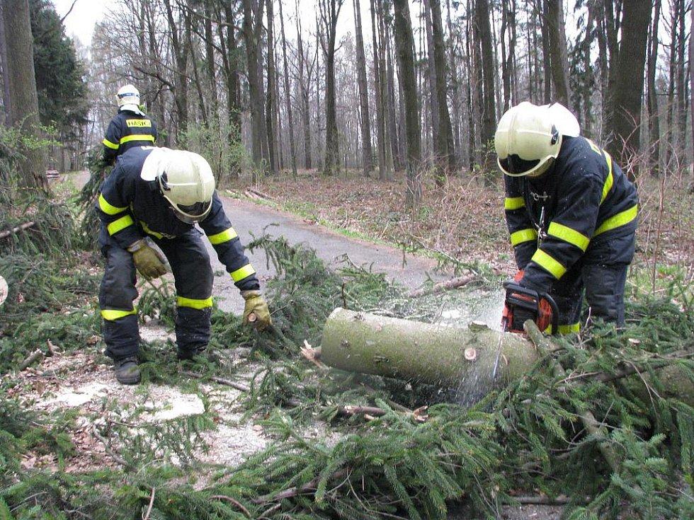 Hasiči rozřezávají strom, který se vyvrátil v lesoparku přes cestu