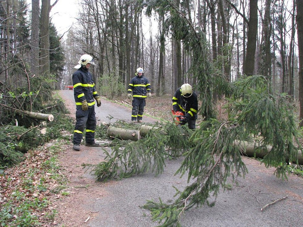 Hasiči rozřezávají strom, který se vyvrátil v lesoparku přes cestu. Ilustrační foto