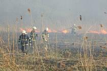 Požár rákosí v Havířově
