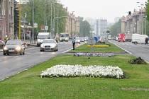Město bude upravovat středové pásy za peníze EU
