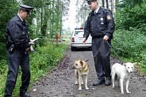 Strážníci zatím musejí psy odvážet do útulků mimo město