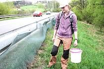 Eliška Kopečková sbírá žáby podél silnice u Těrlické přehrady. Archivní snímek.