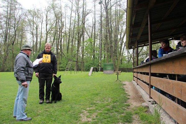 Do Kylešovického areálu se sjelo několik desítek psovodů ze Slezska a severní Moravy.