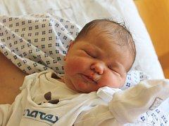 Rozálie Bendová se narodila 7. června, vážila 3,50 kilogramů a měřila 49 centimetrů. Rodiče Aneta a Vráťa z Hradce nad Moravicí jí přejí, aby byla v životě především zdravá. Na sestřičku už doma čeká bráška Radovan.