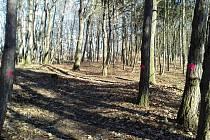Bioparky mají zajistit větší zájem turistů o česko-polské příhraničí.