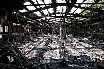 Hasiči v sobotu dopoledne museli likvidovat požár drůbežárny v Háji ve Slezsku na Opavsku. V líhni uhořelo 2650 kuřat, dalších 6350 se podařilo hasičům zachránit.