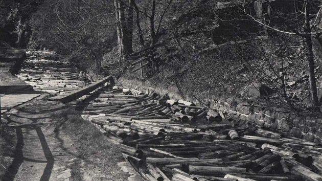 """Historický snímek. Kanálem pluly do papírny kmeny """"weisshuhnky""""."""
