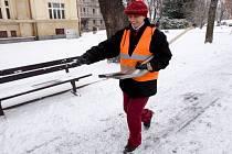 Technické služby letošní mírná zima potěšila.
