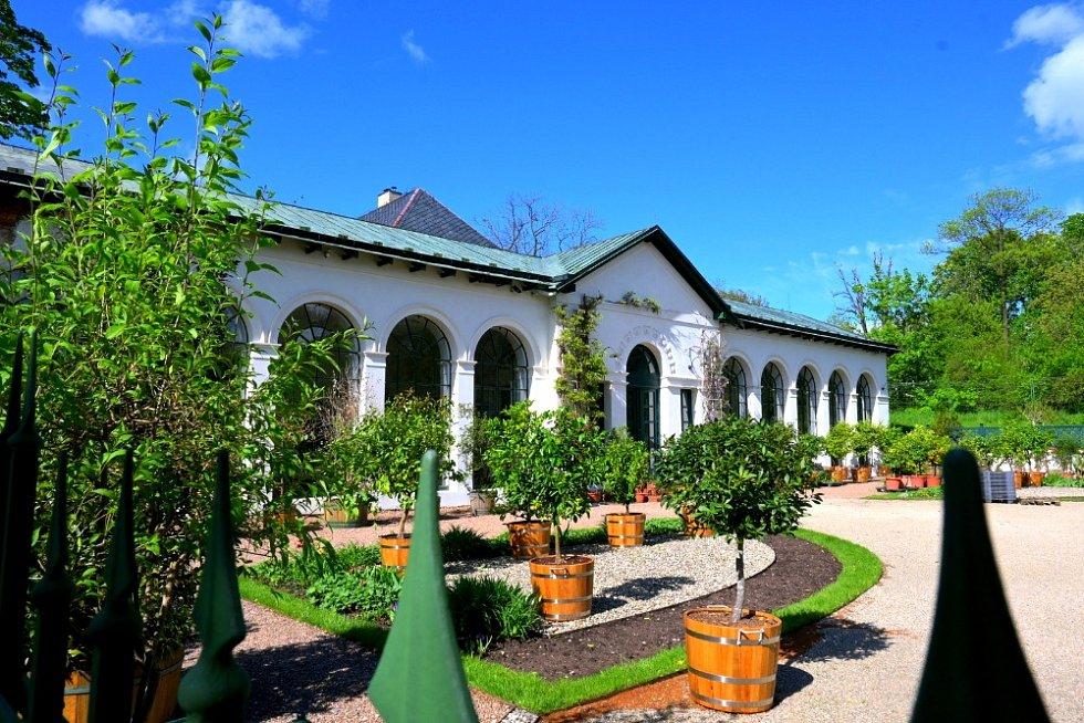Výlet k zámku v Raduni.