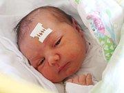 Petra Terzlová se narodila 15. ledna, vážila 4,21 kilogramu a měřila 50 centimetrů. Rodiče Eva a Václav z Opavy jí přejí, aby byla v životě zdravá, šťastná a spokojená. Na sestřičku už doma čeká bratr Dominik.