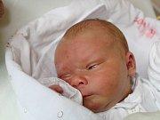 Izabela Býmová se narodila 18. září, vážila 3,85 kilogramů a měřila 51 centimetrů. Rodiče Lucie a Dalibor ze Sudic jí přejí zdraví, Boží požehnání a málo zklamání v životě. Na sestřičku už doma čekají sourozenci Ondra a Nelinka.