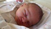 """Vanessa Pavelková se narodila 11. dubna, vážila 3,78 kilogramu a měřila 49 centimetrů. """"Je to naše druhé miminko. Doma na něj čeká sestřička Valerie. Miminku přejeme štěstí, zdraví a lásku,"""" řekli rodiče Kateřina Zahrádková a Jaromír Pavelek z Hlavnice."""