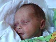 Veronika Badová se narodila 15. listopadu, vážila 3,23 kilogramu a měřila 49 centimetrů. Rodiče Lucie a Karel z Podvihova přejí své prvorozené dceři do života jenom to nejlepší.