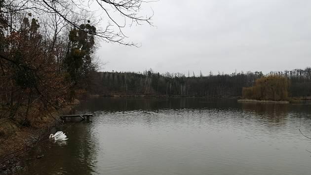 Ke Stěbořicím patří neodmyslitelně i stěbořické rybníky.
