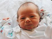 Albert Horák se narodil 2. ledna, vážil 3,20 kilogramů a měřil 50 centimetrů. Rodiče Jana a Honza z Opavy svému prvorozenému synovi přejí, aby byl v životě zdravý a úspěšný.