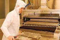 Společnost IVAX Pharmaceuticals, dříve známá pod názvem Galena, je významným farmaceutickým výrobcem s dlouhou historií.