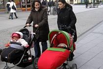 Volba prezidenta Opavany zajímá. Klaus i Švejnar mají u oslovených obyvatel Opavy přibližně stejnou podporu.