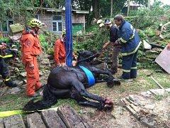 Čtyři jednotky hasičů se podílely ve středu odpoledne v Kružberku na úspěšné záchraně dospělého koně, který spadl do hluboké studny.