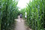 Kukuřičné bludiště v Opavě.