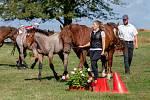 Mistrovství České republiky v jednospřeží a dvouspřeží chladnokrevných koní.