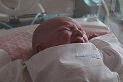 Adéla Nopová se narodila 22. listopadu 2018, vážila 4,05 kilogramu a měřila 50 centimetrů. Rodiče Hana a Lukáš ze Skrochovic jí do života přejí zdraví a štěstí. Na Adélku už doma čeká sestřička Karolínka.