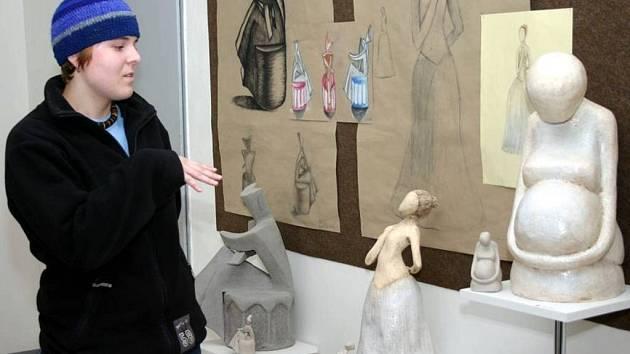 Práce studentů Soukromé střední umělecké školy AVE ART jsou právě k vidění v galerii základní umělecké školy na Solné ulici.