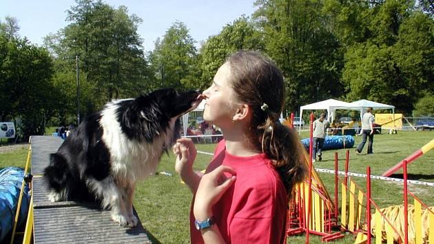 Opavské chovatelky byly na Mistrovství Evropy juniorů v Ostende úspěšné.