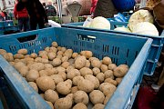 V pátek ráno mohli Opavané poprvé za posledních několik let navštívit farmářské nebo také zelné trhy na Dolním náměstí v Opavě. Návštěvníci si mohli zakoupit například sazenice, uzeniny, med, cukrovinky či výrobky z keramiky.