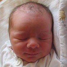 Jmenuji se Honzík Prokša, narodil jsem se 11. dubna 2018, při narození jsem vážil 3400 gramů a měřil 50 centimetrů. Moje maminka se jmenuje Martina Prokšová a můj tatínek se jmenuje Ondřej Prokša. Bydlíme v Opavě.