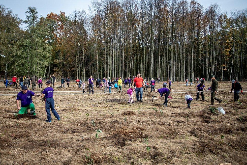 Šilheřovice, akce Sázíme lesy. lustrační foto