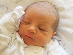 Soňa Prasková se narodila 27. února, vážila 2,74 kilogramů a měřila 46 centimetrů. Rodiče Gabriela a Pavel z Chuchelné jí do života přejí sílu, lásku a štěstí. Na sestřičku se už doma těší brácha David.