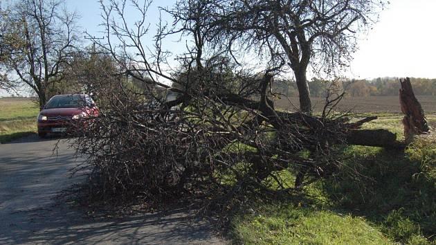 Spadlý strom komplikoval dopravu i v blízkosti Kobeřic.