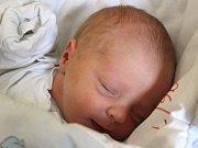 Sofie Pavelková se narodila 18. dubna, vážila 2,66 kilogramů a měřila 46 centimetrů. Rodiče Lucie a Lukáš z Opavy přejí své prvorozené dceři do života mnoho zdraví a štěstí.