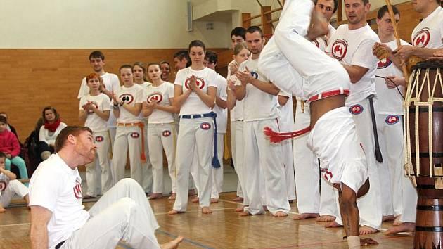 Capoeira je propojení boje, hudby, akrobacie a zpěvu.