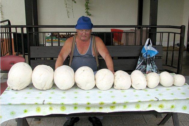 VBohuslavicích se pýchavkám daří. Před nedávnem Martin Kučera nedaleko Bohuslavic narazil na devět těchto hub.