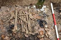 Kosterní pozůstatky nalezené u Borové nedaleko Bolatic na Opavsku patřily německému vojákovi.