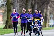 Bratři Vimmerovi organizovali v Opavě již akci Joy Run, kde zdraví běhali společně s postiženými. Nyní pokračují s Joy Festem.