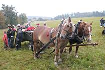 Desítky koní a jezdců se sjely v sobotu do Mikolajic, aby se zúčastnily dvanáctého ročníku Hubertovy jízdy.