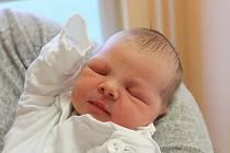 Dorota Uhláriková se narodila 25. prosince 2018, vážila 3,41 kilogramu a měřila 50 centimetrů. Rodiče Zuzana a Jaroslav z Opavy jí přejí, aby byla zdravá, šťastná a ať má život bez překážek. Na sestřičku se už doma těší bráška Honzík.
