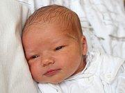 Sára Štefková se narodila 20. ledna, vážila 3,11 kilogramu a měřila 49 centimetrů. Rodiče Renáta a Jan z Chuchelné přejí své prvorozené dceři do života zdraví, štěstí a Boží požehnání.