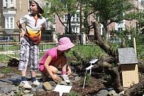 Na budování školního arboreta se podílely i děti. Tato dvojice zkoumá broukoviště.