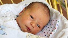 David Žídek se narodil 29. října, vážil 3,32 kilogramu a měřil 50 centimetrů. Rodiče Katka a Martin z Rohova mu do života přejí zdraví, štěstí, spokojenost a hodně kamarádů. Na Davídka se už doma těší šestiletá sestřička Viktorka.