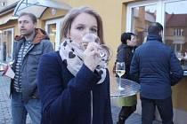 Markéta Langrová si v areálu Gastrocentra Slezské univerzity vychutnává skleničku Pinot Blanc. Návštěvníci Opavské vinné stezky při této akci mohli ochutnat z více než sta druhů vín.