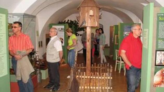 Návštěvníci expozice se kochají vystavenými exponáty.